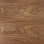 walnut_american_black