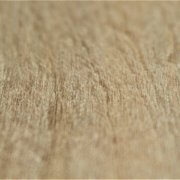 Leatherwood (2)